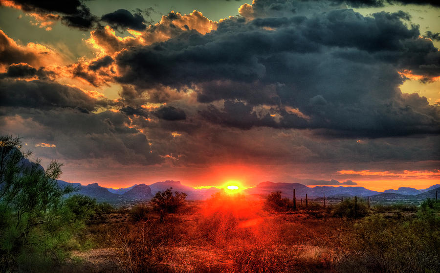 Arizona Photograph - Brilliance by Saija  Lehtonen