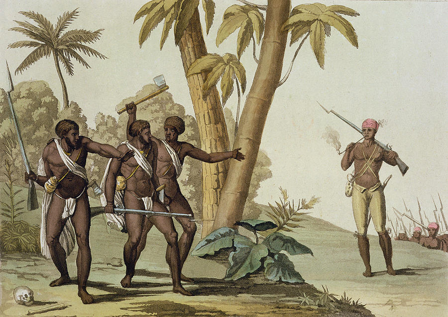 British Guyana Surinam, The Slave Drawing