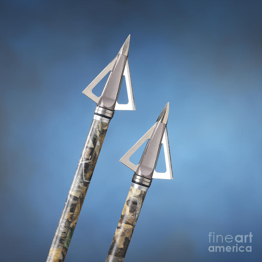 Broadheads On Blue Photograph