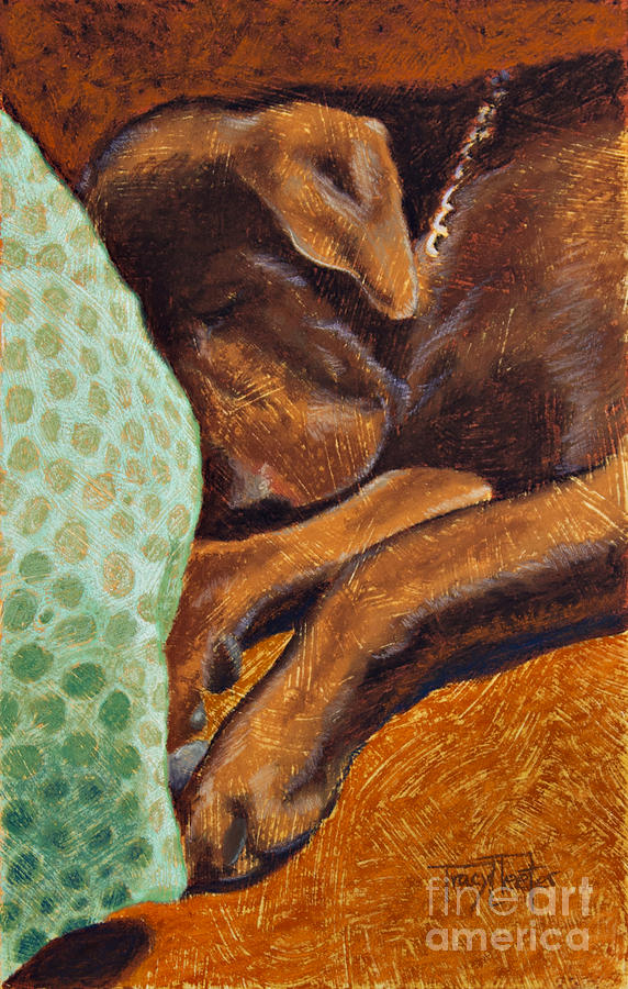 Brown Dog Pastel  - Brown Dog Fine Art Print