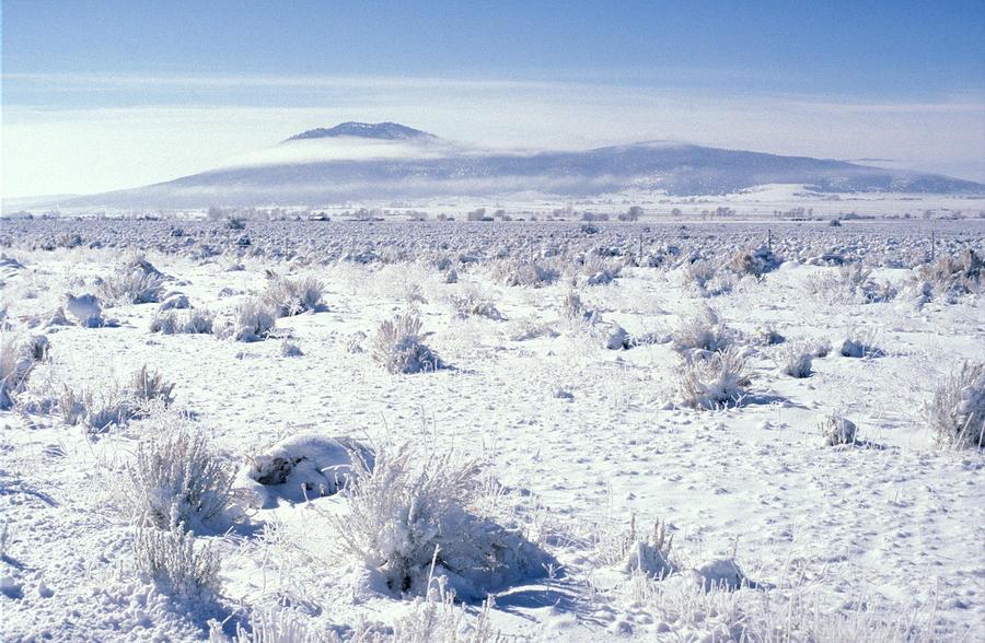 Landscape Photograph - Brrrr 1021 by Brent L Ander
