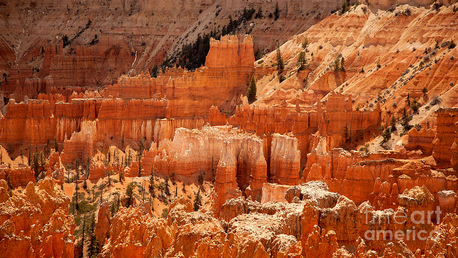 America Photograph - Bryce Canyon Landscape by Jane Rix