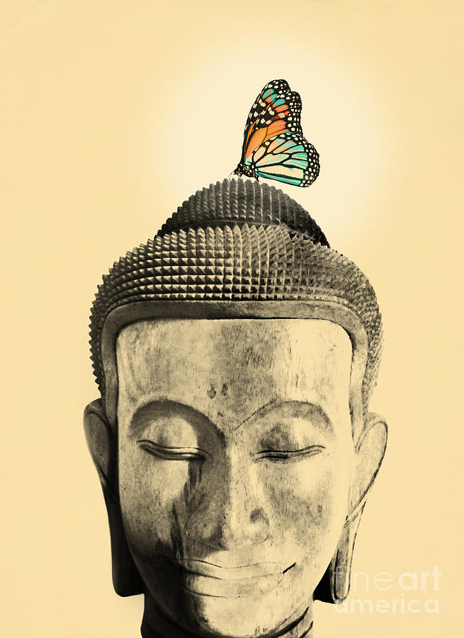 Buddha And Tranquility Digital Art  - Buddha And Tranquility Fine Art Print