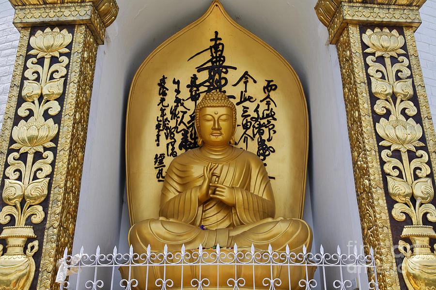 Buddha Statue At The World Peace Pagoda Pokhara Photograph