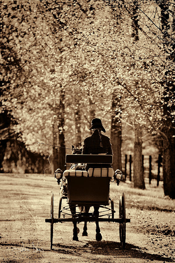Flatlandsfoto Photograph - Buggy Ride by Joan Davis