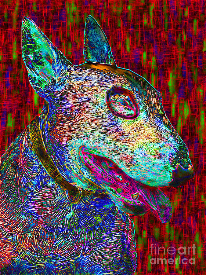 Bull Terrier Dog Pop Art - 20130121v2 Photograph  - Bull Terrier Dog Pop Art - 20130121v2 Fine Art Print