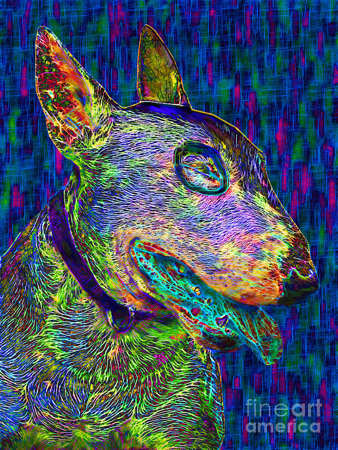 Bull Terrier Dog Pop Art - 20130121v4 Photograph  - Bull Terrier Dog Pop Art - 20130121v4 Fine Art Print