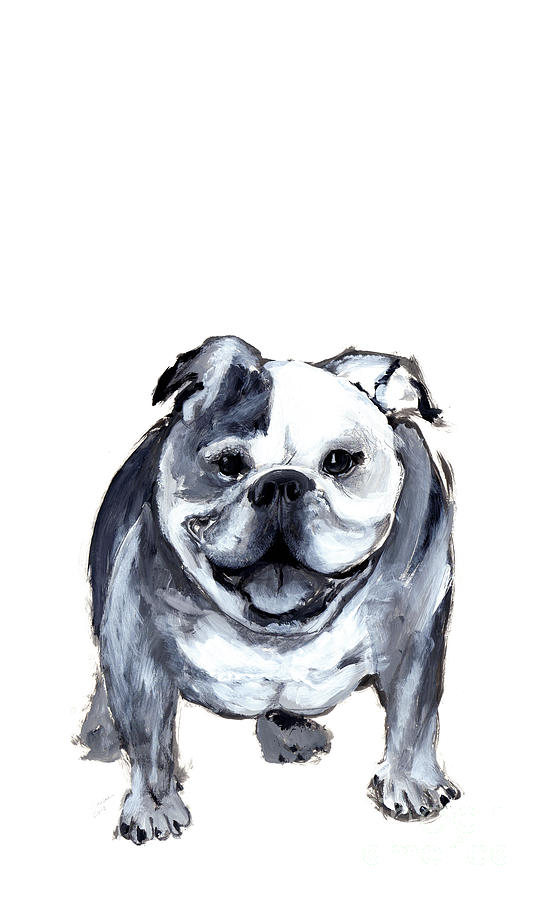Bulldog Painting - Bulldog  by Barbara Marcus