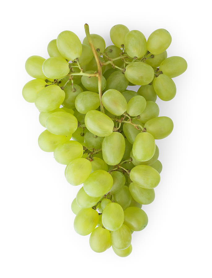 Bunch Of Grapes Photograph