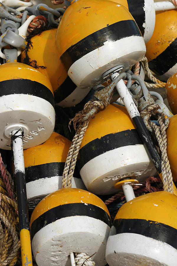 Buoys Photograph