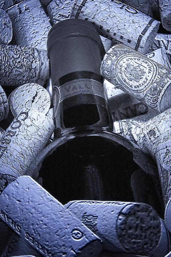 Wine Photograph - Buried Wine Bottle by Tom Mc Nemar