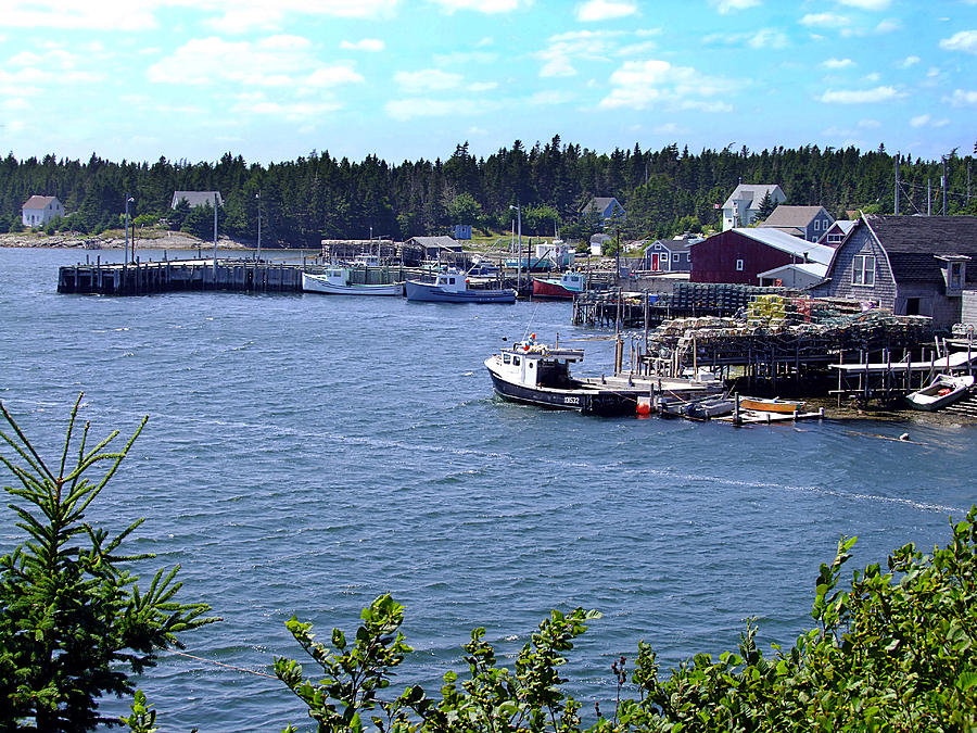 Bush Island Nova Scotia Photograph