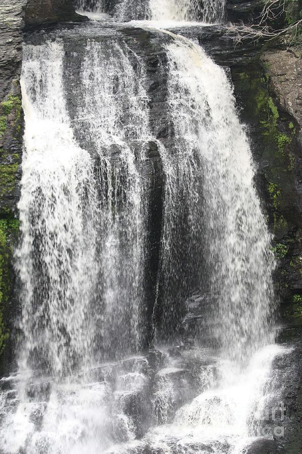 Bushkill Waterfalls Photograph