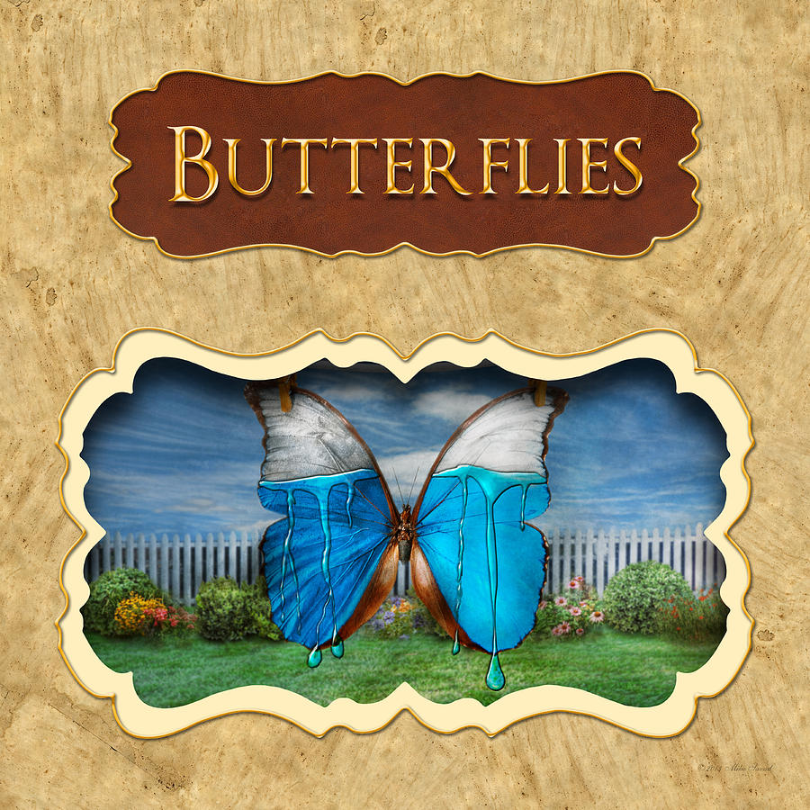 Butterflies Button Photograph