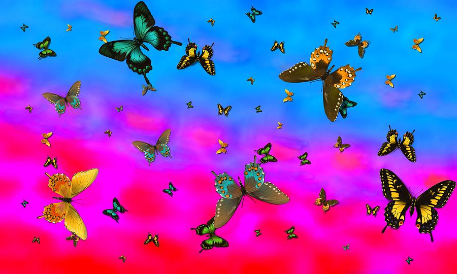 Butterfly Swarm Sunrise 3-4-14 6 Am is a photograph by L Brown which ...