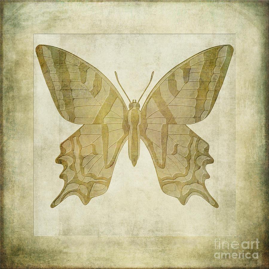 Butterfly Textures Digital Art