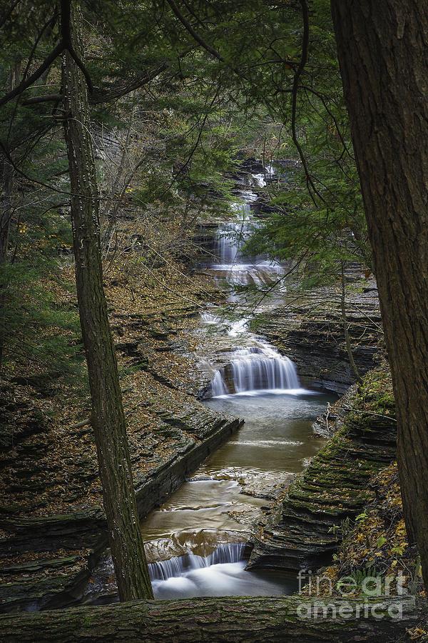 Michele Photograph - Buttermilk Falls In Autumn IIi by Michele Steffey