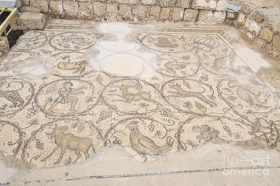 Mosaic Photograph - Byzantine Mosaic Depicting Animals And Hunting Scenes. by Shay Levy
