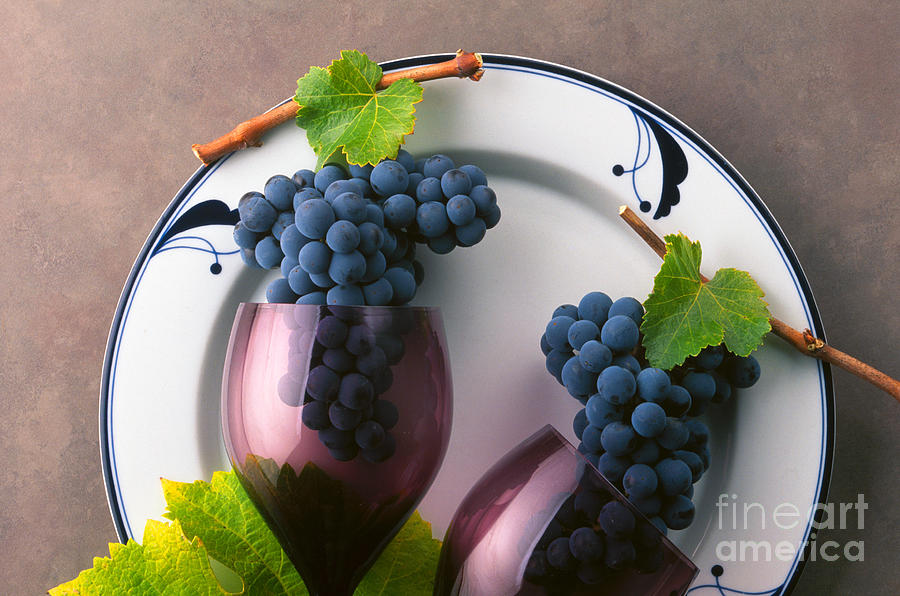 Cabernet Grapes And Wine Glasses Photograph