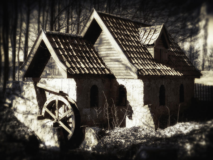 Cabin In The Woods Photograph  - Cabin In The Woods Fine Art Print
