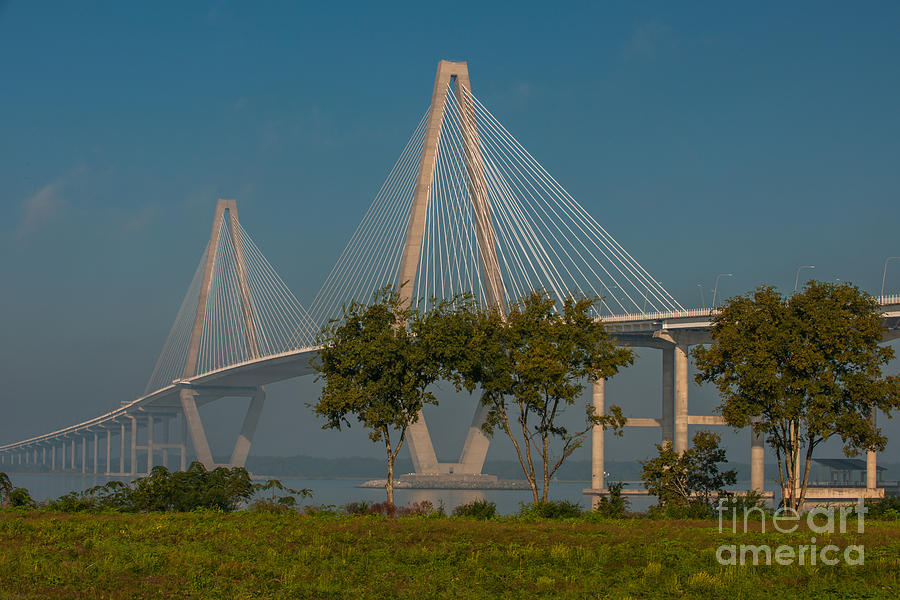 Cable Stayed Bridge Photograph