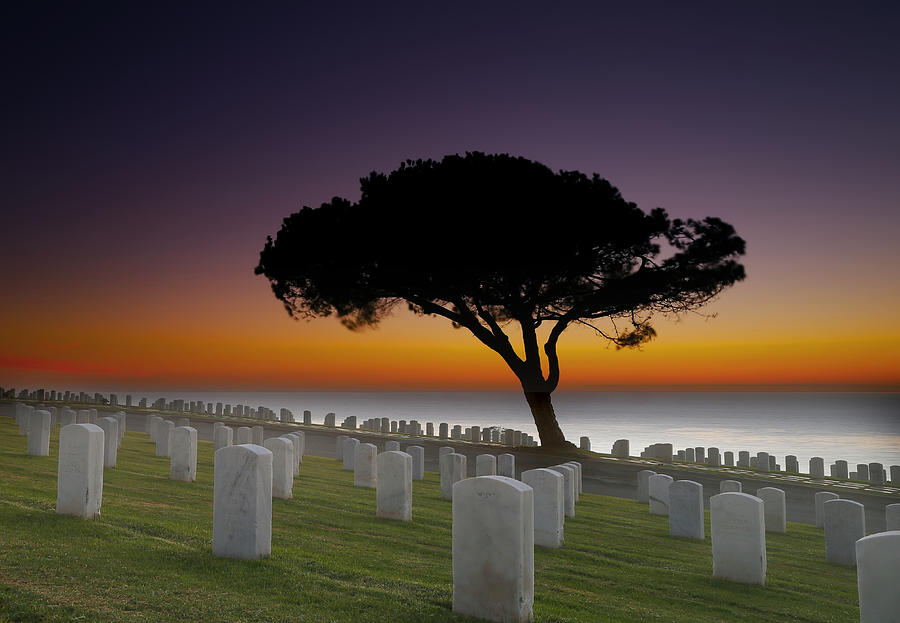 Cabrillo National Monument Cemetery Photograph  - Cabrillo National Monument Cemetery Fine Art Print