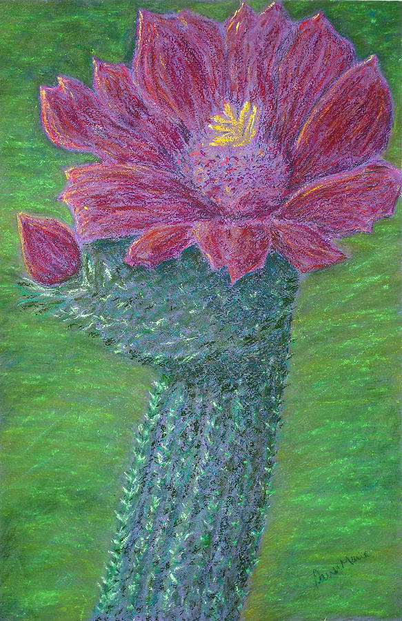 Cactus Bloom Painting