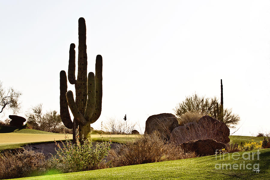 Cactus Golf Photograph  - Cactus Golf Fine Art Print