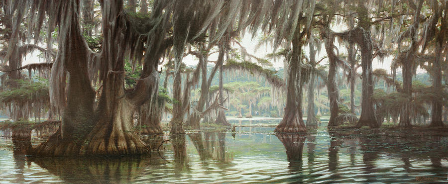 Caddo Lake Swamp Painting By Rc Davis