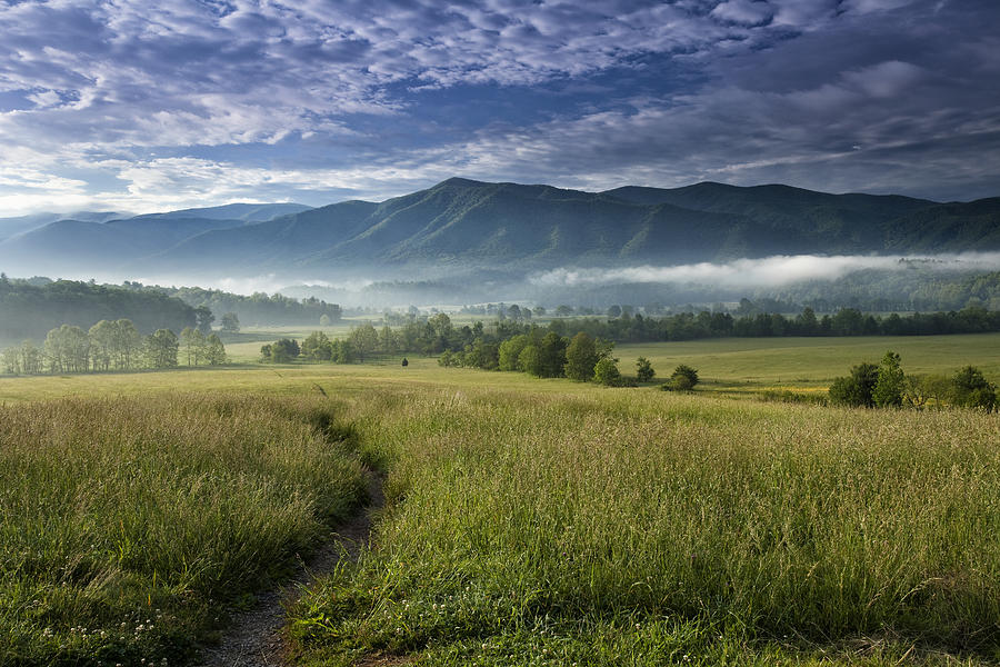 Cades Cove Meadow Photograph