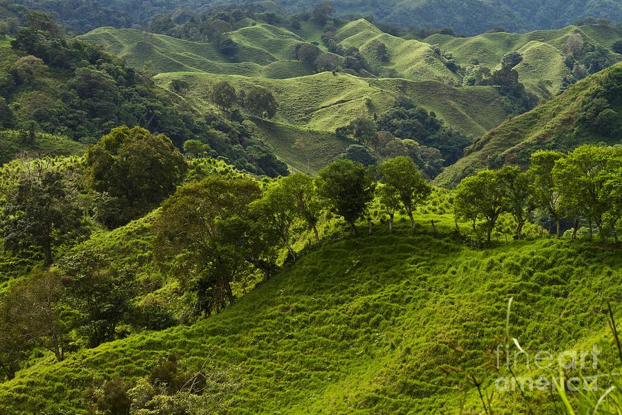 Caizan Hills Photograph