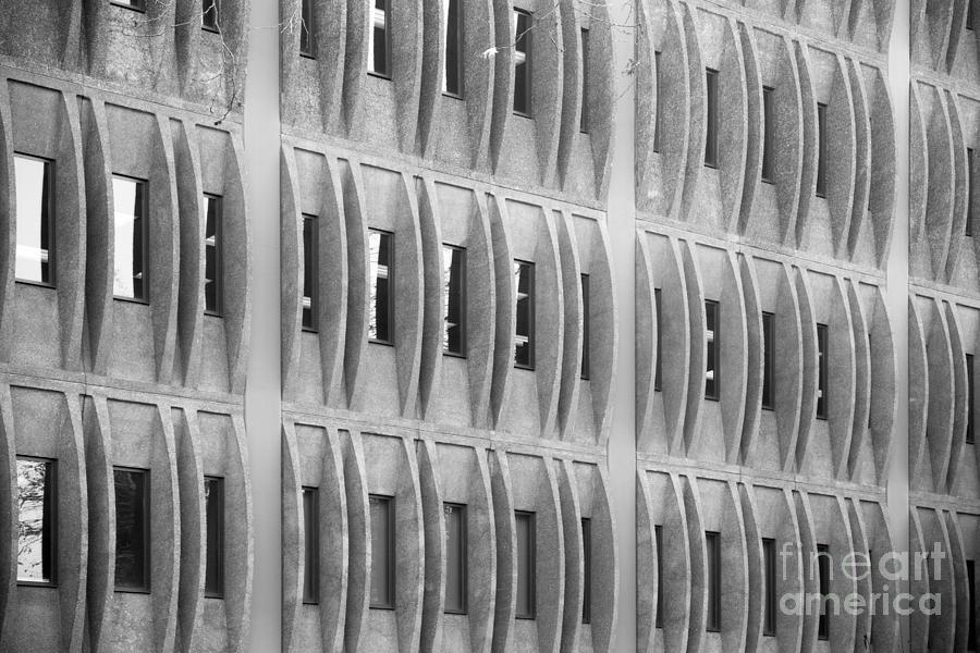 Cal Poly Pomona Texture Photograph