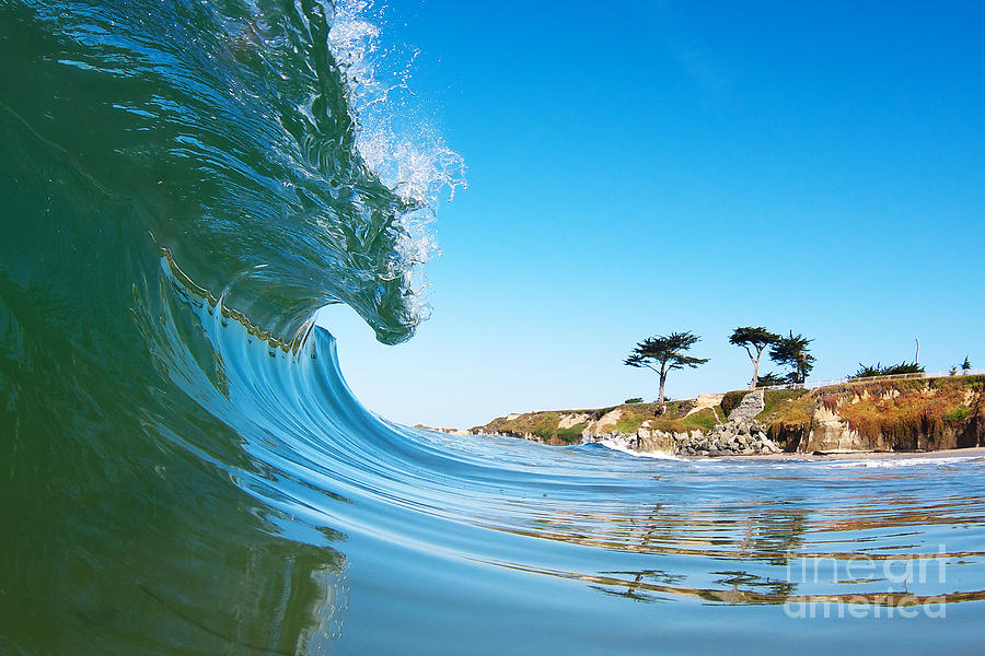 California Photograph - California Curl by Paul Topp