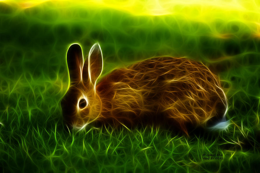 California Hare - 0291 Digital Art  - California Hare - 0291 Fine Art Print