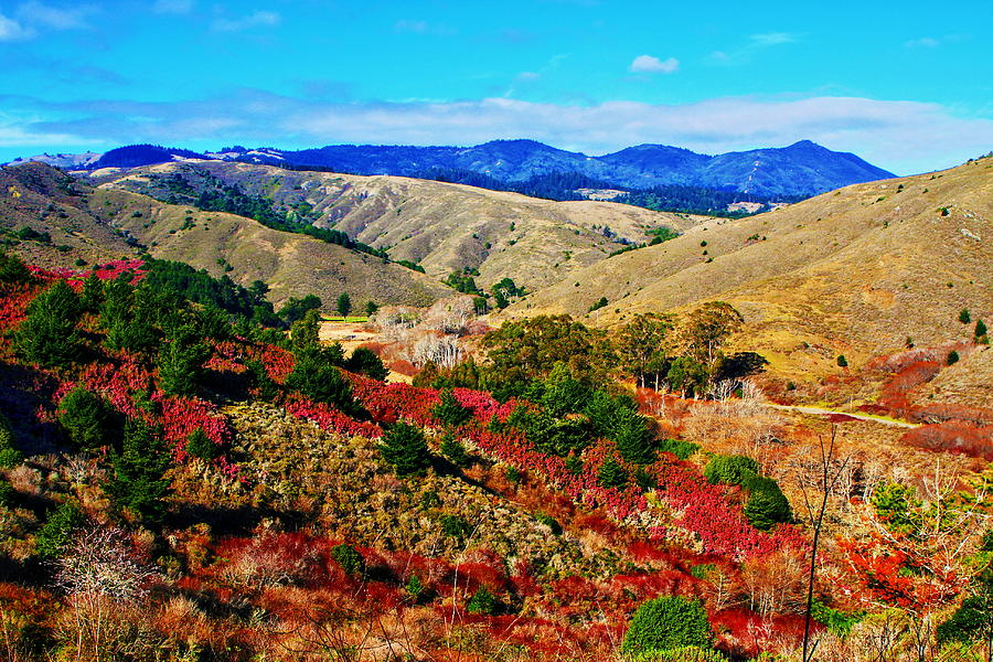 California Hills Photograph  - California Hills Fine Art Print