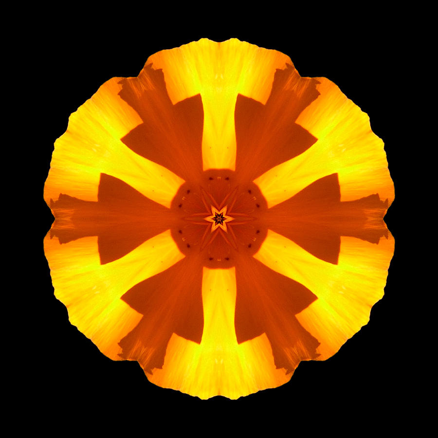 California Poppy Flower Mandala Photograph