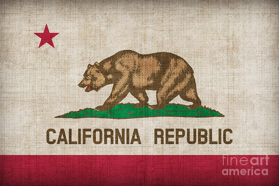 California Painting - California State Flag by Pixel Chimp