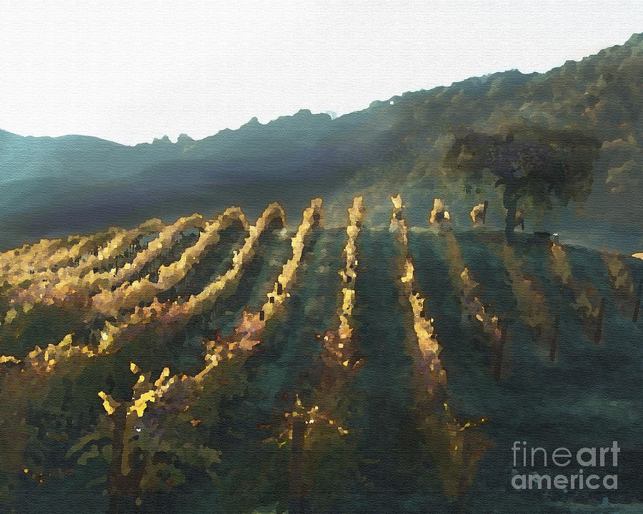 Corde Valle San Martin Ca Painting - California Vineyard Series Wine Country by Artist and Photographer Laura Wrede