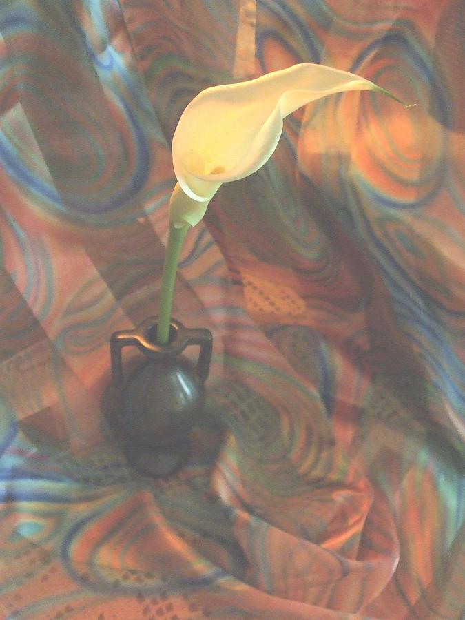Calla Lily In Vase Photograph - Calla 9 by Teri  Haley