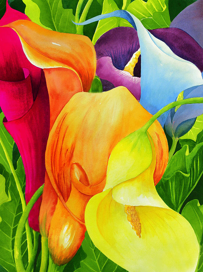 Flower Paintings Painting - Calla Lily Rainbow by Janis Grau