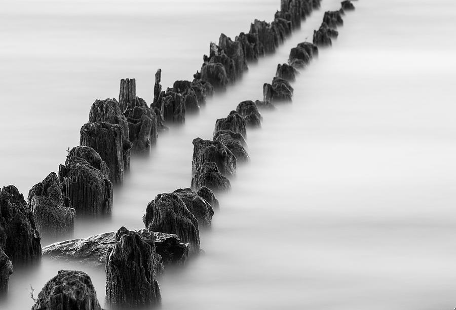 Calm Across The River Photograph