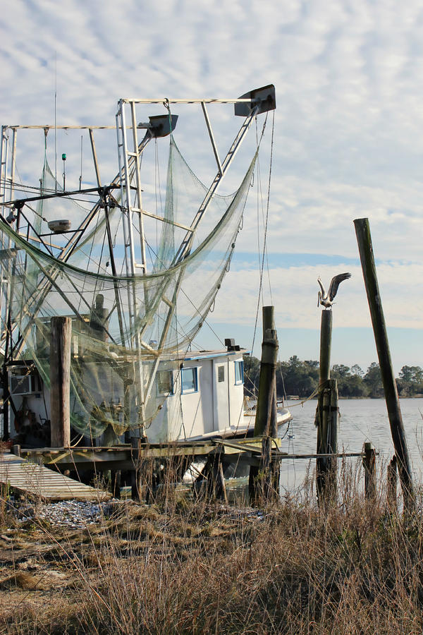 Shrimp Boat Photo Photograph - Camilla Ann by Lynn Jordan