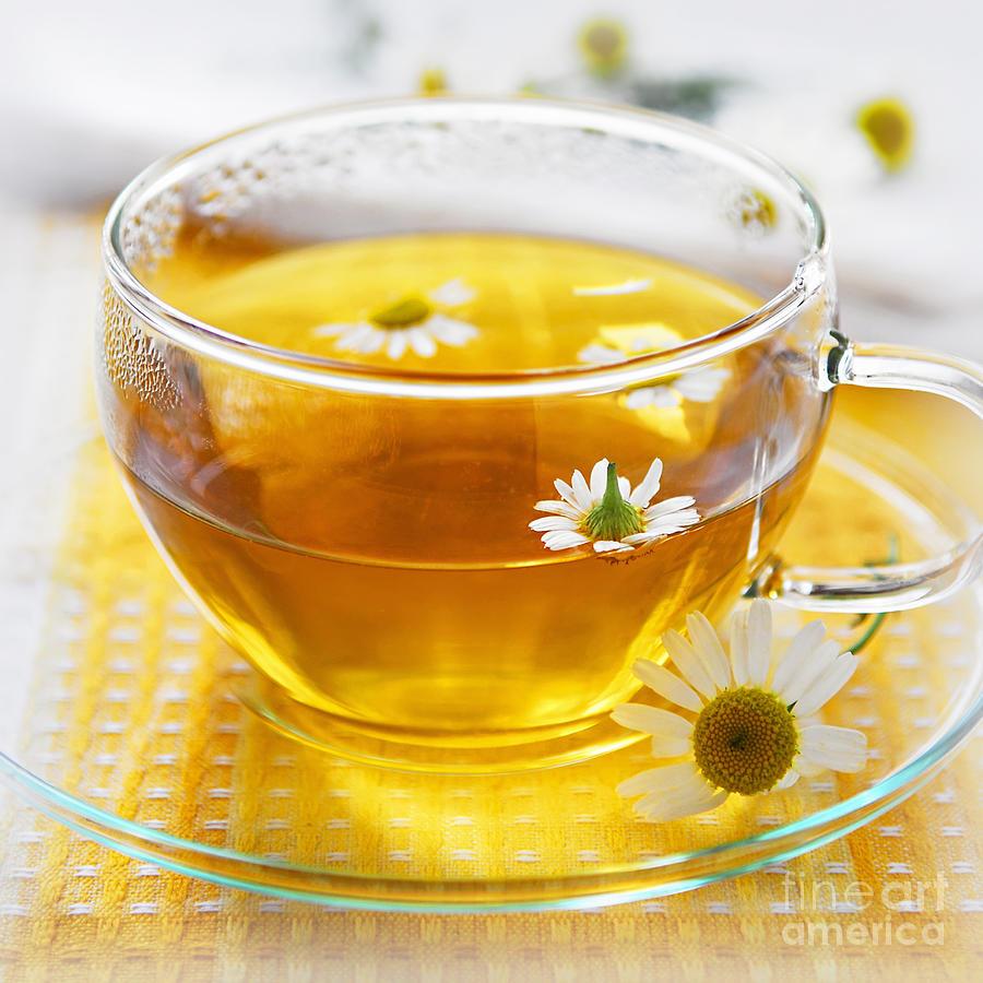 Camomile Tea Photograph