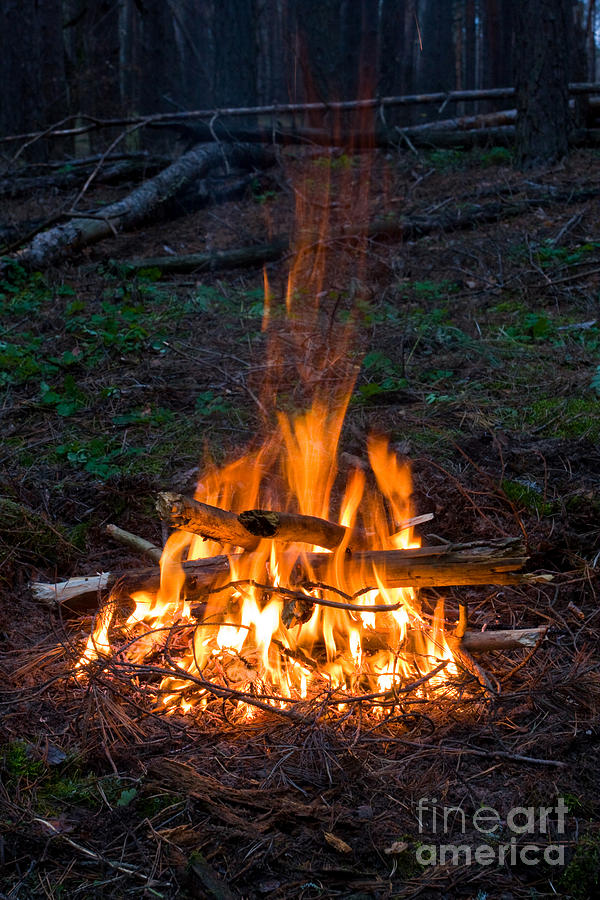 Camp Fire Photograph