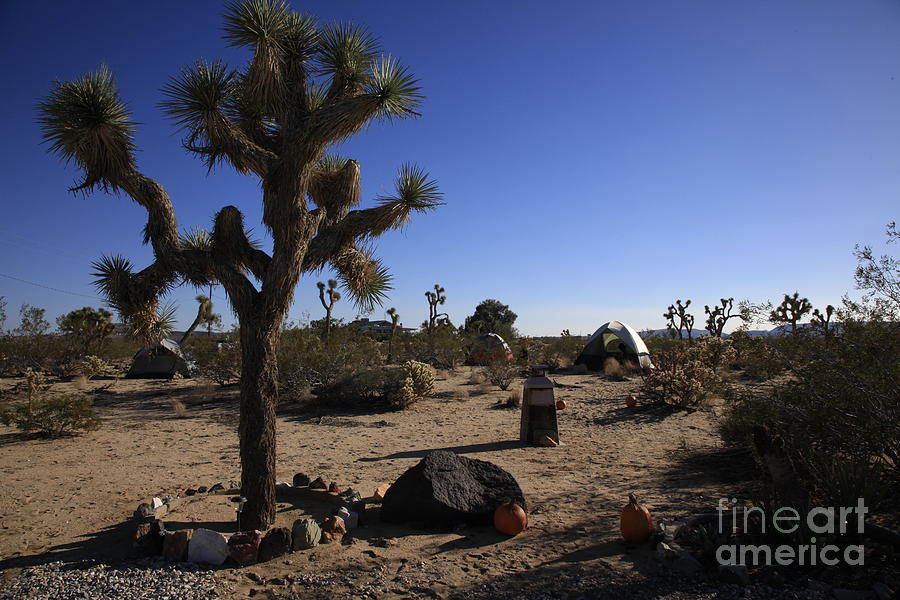 Camping In The Desert Photograph