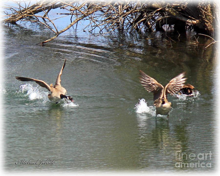 Canada Goose' official michael