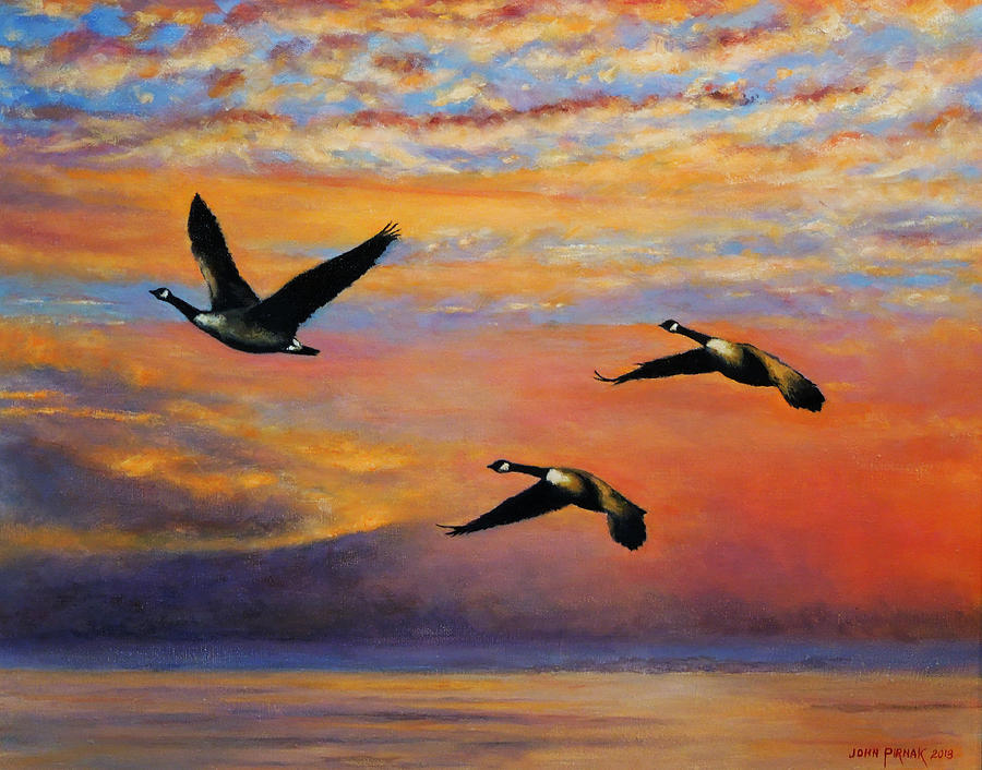 Canadian Honkers Painting
