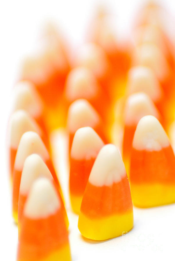 Candy Corn Army Photograph  - Candy Corn Army Fine Art Print