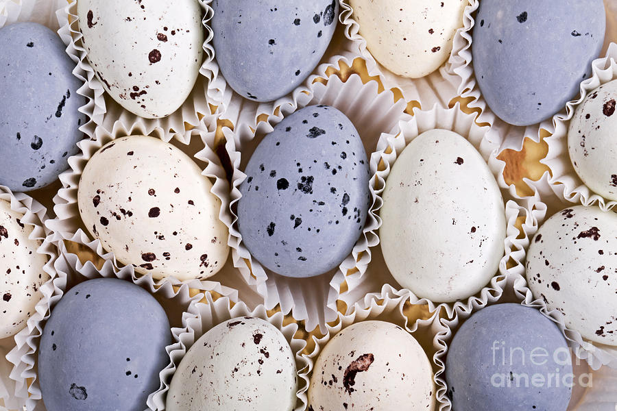 Candy Eggs Photograph