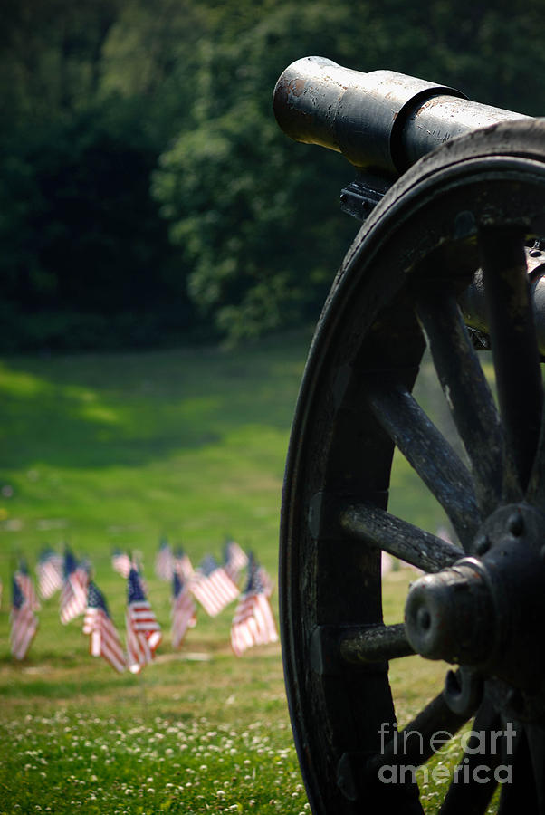 Cannon Memorial With American Flags Photograph